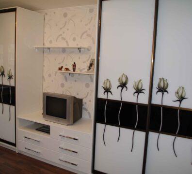 шкаф купе в гостиную на всю стену